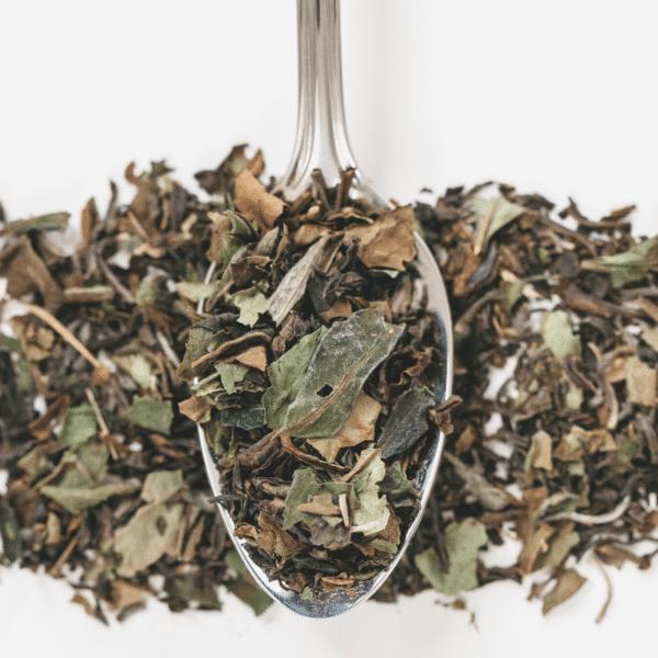 thé-vert-du-matin-feuilles