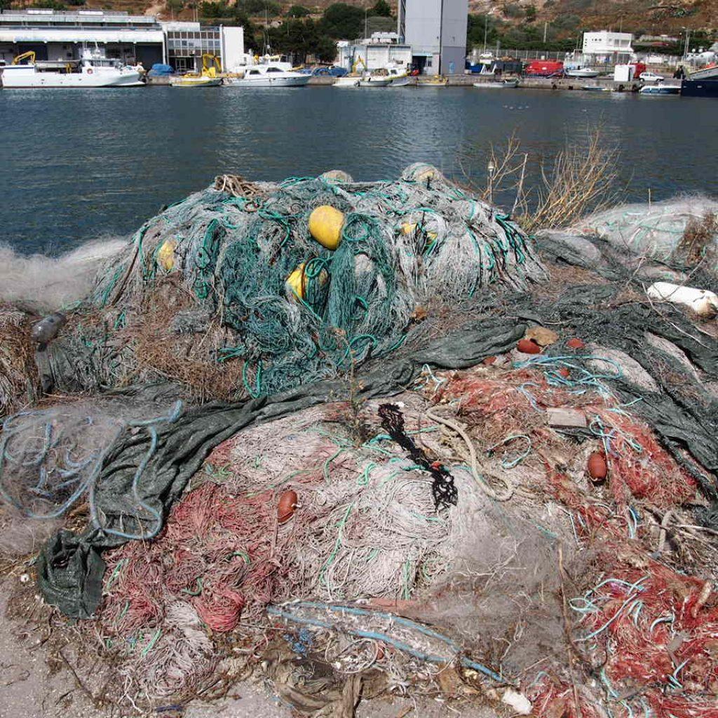 Filet De Peche Déco Pas Cher sabine : plongeuse et amoureuse des fonds marins - greenma