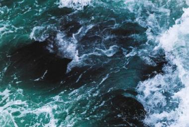 Mersea Mersea ou les t-shirts qui sauvent nos océans